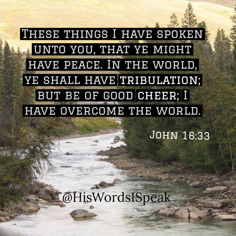 I Have Overcome the World - John 16:33 - HWIS
